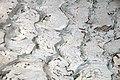 Mudcracks atop asymmetrical ripples (El Malpais National Monument, New Mexico, USA).jpg
