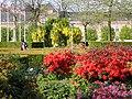 Musikhusparken (blomster).jpg
