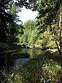 NÖ-Naturdenkmal ZT-149 Kamptal von Roiten bis Uttissenbach sl1.jpg