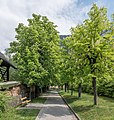 Nötsch Kastanienallee zum Haus Wiegele 39 Museum Nötscher Kreis 08052015 3416.jpg