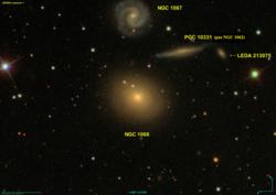 NGC 1066 SDSS.png