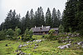 NP Kalkalpen Feichtauhütte 2.jpg
