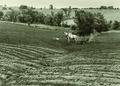 NRCSMD01001 - Maryland (4479)(NRCS Photo Gallery).tif