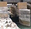 Nahal-taninim-reserve-064.jpg