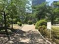 Nano Park - green - late spring - may 23 2019 16 08 35 940000.jpeg
