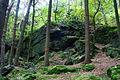 Natural monument Tupadelské skály in 2012 (11).JPG