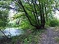 """Nature Reserve """"Carska Bara"""", in the municipality of Zrenjanin, Serbia. - panoramio (1).jpg"""