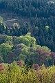 Naturpark Thüringer Wald.Blick vom Reinhardsberg.11.ajb.jpg
