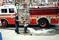 New York City, 17 May 08 (2502460906).jpg