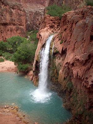 English: Havasu Falls after the August 2008 fl...