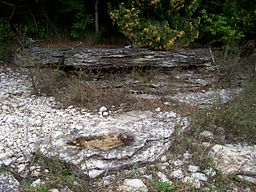 NiagaraEscarpmentOutcroppings LakeMichiganShore.jpg