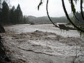 Nisqually River 2006 flood Sunshine Point Campground.jpg