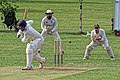 North London CC v Acton CC at Crouch End, Haringey, London, England 07.jpg