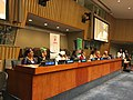 OAFLA High Level Event during the 72nd UNGA.jpg