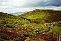 Offa's Dyke Path rounding Moel y Plas - geograph.org.uk - 724144.jpg