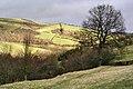 On Offa's Dyke - near Mardu - geograph.org.uk - 322201.jpg