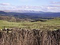 On the Dales Way - geograph.org.uk - 341162.jpg