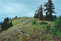 Oregon Butte.jpg