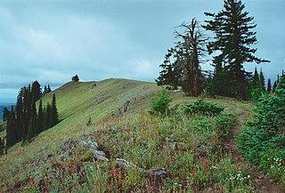 Umatilla National Forest