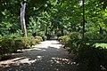 Orto Botanico Florence - panoramio (5).jpg