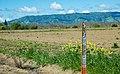 PG&E Gas Pipeline, Yolo County, California (25787146350).jpg