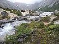 PN Tierra del Fuego (rio).jpg