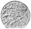 PSM V61 D155 Section of iron magnified 60 diameters.png