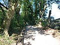 Paignton , Paignton Zoo, Path - geograph.org.uk - 1484869.jpg