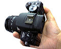 Panasonic Lumix DMC-G1, -28 Nov. 2008 b.jpg