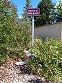 Panneau E60 Impasse du Serre du Lot, Les Pilles.jpg