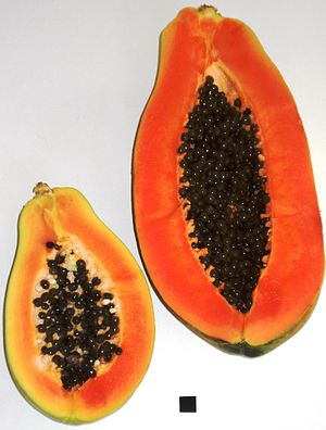 English: Papaya - two half fruits of different...
