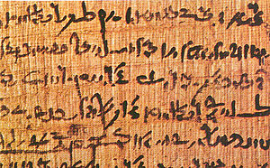 Cyperus papyrus - Papyrus paper