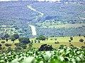 Paracatu - State of Minas Gerais, Brazil - panoramio (5).jpg