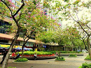 Wiki travel hong kong