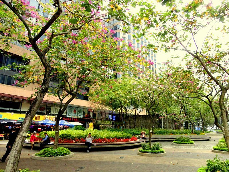 File:Park Hong Kong.JPG