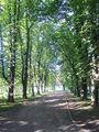 Park Mickiewicza Wieliczka.jpg