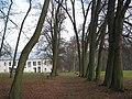 Park pałacowy Wiśniowa 2013 07.JPG