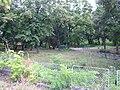 Park pred kmetstvoto v Krushovo.jpg