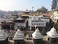 Pashupatinath Temple IMG 1496 38.jpg