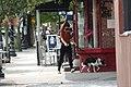 Passerby walking dog near Soho Pizza in Albany, New York.jpg