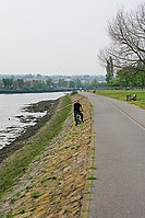 Path beside the River Itchen north of Cobden Bridge, Southampton - geograph.org.uk - 415164.jpg