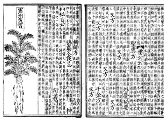 Hua Sui - The Bencao on traditional Chinese medicine; printed with woodblock in 1249, Song Dynasty