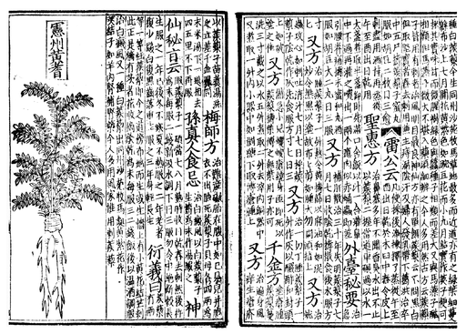 Pen ts'ao, woodblock book 1249-ce