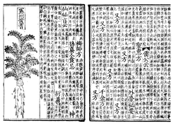 The Bencao on traditional Chinese medicine; printed with woodblock in 1249, Song Dynasty