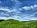 Pereslavsky District, Yaroslavl Oblast, Russia - panoramio (4).jpg