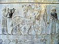 Persepolis 2007 Darafsh (17).JPG