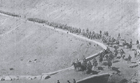 Pervaya Armyanskaya Drujina 1 battalion 1914.png
