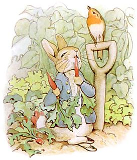 Peter Rabbit fictional character in childrens books by Beatrix Potter