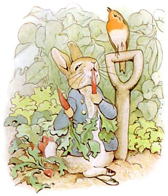"""Peter Rabbit - """"First he ate some lettuces and some French beans; and then he ate some radishes."""""""