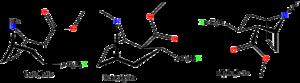 Phenyltropane - Image: Phenyltropaneisomers